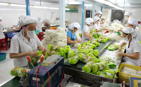 Vietnam's fruit, vegetable exports growing, vietnam economy, business news, vn news, vietnamnet bridge, english news, Vietnam news, news Vietnam, vietnamnet news, vn news, Vietnam net news, Vietnam latest news, Vietnam breaking news