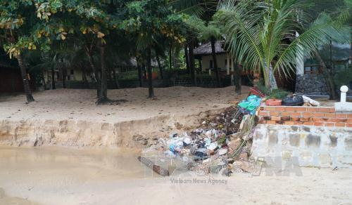Pollution harms Phu Quoc, Vietnam environment, climate change in Vietnam, Vietnam weather, Vietnam climate, pollution in Vietnam, environmental news, sci-tech news, vietnamnet bridge, english news, Vietnam news, news Vietnam, vietnamnet news, Vietnam net