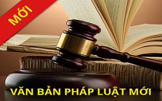 12 new laws announced, Government news, Vietnam breaking news, politic news, vietnamnet bridge, english news, Vietnam news, news Vietnam, vietnamnet news, Vietnam net news, Vietnam latest news, vn news