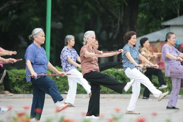 Int'l workshop on population ageing held in HN