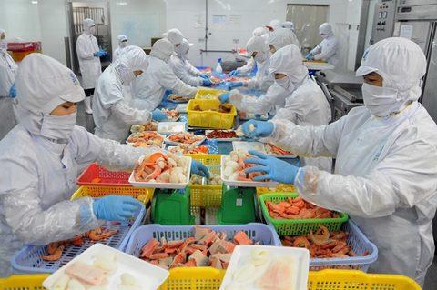 Vietnam's shrimp exports earn $1.56 billion in H1