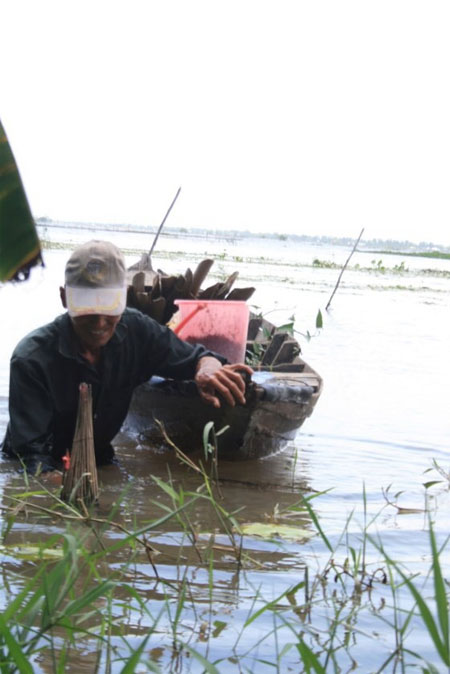 Mekong Delta, flooding season, build dams, Vietnam economy, Vietnamnet bridge, English news about Vietnam, Vietnam news, news about Vietnam, English news, Vietnamnet news, latest news on Vietnam, Vietnam