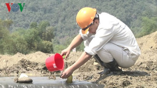 Nghe Tinh Metal Color Joint Stock Company, dam collapse incident, violation of environmental laws, fine, Vietnam economy, Vietnamnet bridge, English news about Vietnam, Vietnam news, news about Vietnam, English news, Vietnamnet news,