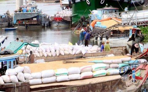 VN exporters gain insights into Australia, New Zealand markets, vietnam economy, business news, vn news, vietnamnet bridge, english news, Vietnam news, news Vietnam, vietnamnet news, vn news, Vietnam net news, Vietnam latest news, Vietnam breaking news