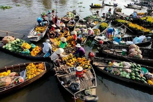 Mekong Delta on right track to boost tourism, travel news, Vietnam guide, Vietnam airlines, Vietnam tour, tour Vietnam, Hanoi, ho chi minh city, Saigon, travelling to Vietnam, Vietnam travelling, Vietnam travel, vn news