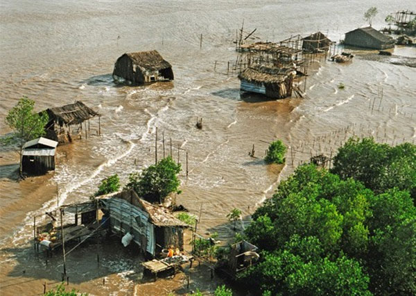 Mekong Delta, climate change response projects, Vietnam economy, Vietnamnet bridge, English news about Vietnam, Vietnam news, news about Vietnam, English news, Vietnamnet news, latest news on Vietnam, Vietnam