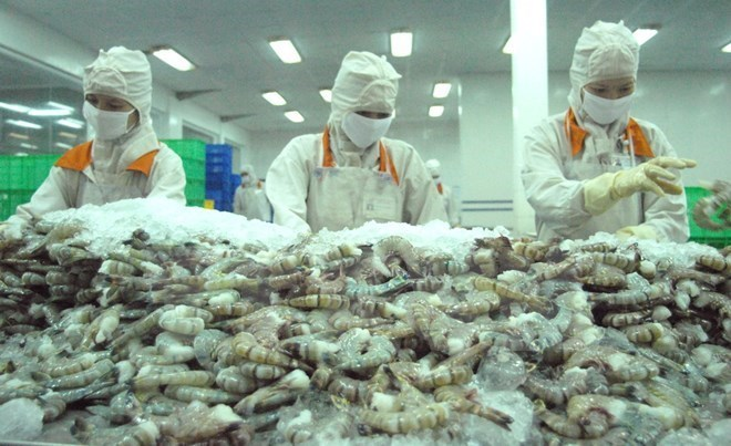 Vietnamese Shrimp Exporters Struggle To Compete In US