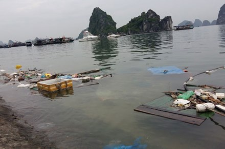 Ha Long Bay surrounded by rubbish, Vietnam environment, climate change in Vietnam, Vietnam weather, Vietnam climate, pollution in Vietnam, environmental news, sci-tech news, vietnamnet bridge, english news, Vietnam news, news Vietnam, vietnamnet news, Vie