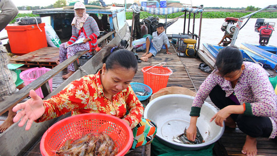 Mekong Delta during the flood season, social news, vietnamnet bridge, english news, Vietnam news, news Vietnam, vietnamnet news, Vietnam net news, Vietnam latest news, vn news, Vietnam breaking news
