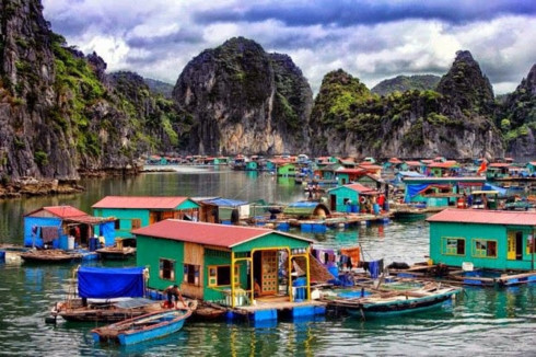 Protecting Ha Long Bay's aqua resources, environmental news, sci-tech news, vietnamnet bridge, english news, Vietnam news, news Vietnam, vietnamnet news, Vietnam net news, Vietnam latest news, Vietnam breaking news, vn news