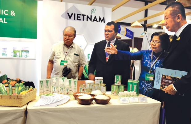 Foreign chains a launchpad for Vietnam goods to reach world market