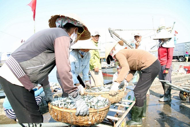 Vietnam's seafood output hits 2.3 million tonnes in eight months, vietnam economy, business news, vn news, vietnamnet bridge, english news, Vietnam news, news Vietnam, vietnamnet news, vn news, Vietnam net news, Vietnam latest news, Vietnam breaking news