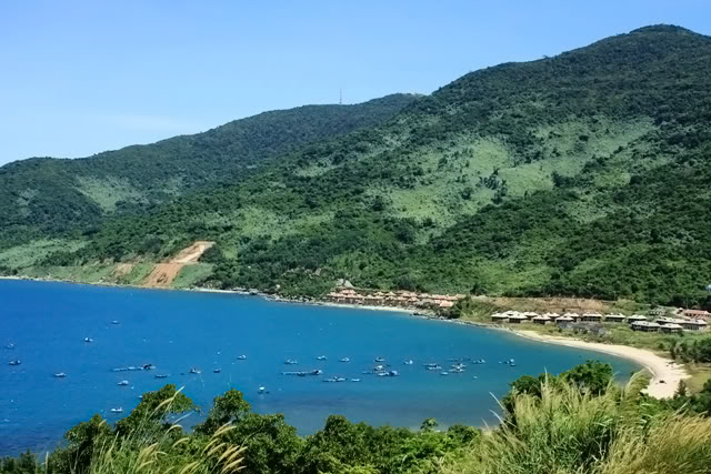 Da Nang proposes reducing scale of 10 projects in Son Tra Peninsula, vietnam economy, business news, vn news, vietnamnet bridge, english news, Vietnam news, news Vietnam, vietnamnet news, vn news, Vietnam net news, Vietnam latest news, Vietnam breaking ne