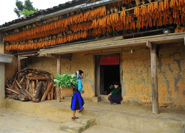 Ha Giang, Vietnam economy, Vietnamnet bridge, English news about Vietnam, Vietnam news, news about Vietnam, English news, Vietnamnet news, latest news on Vietnam, Vietnam