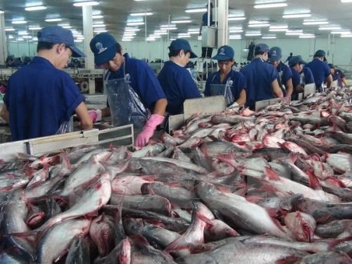 US raises anti-dumping duties on Vietnam's frozen catfish fillets, vietnam economy, business news, vn news, vietnamnet bridge, english news, Vietnam news, news Vietnam, vietnamnet news, vn news, Vietnam net news, Vietnam latest news, Vietnam breaking news