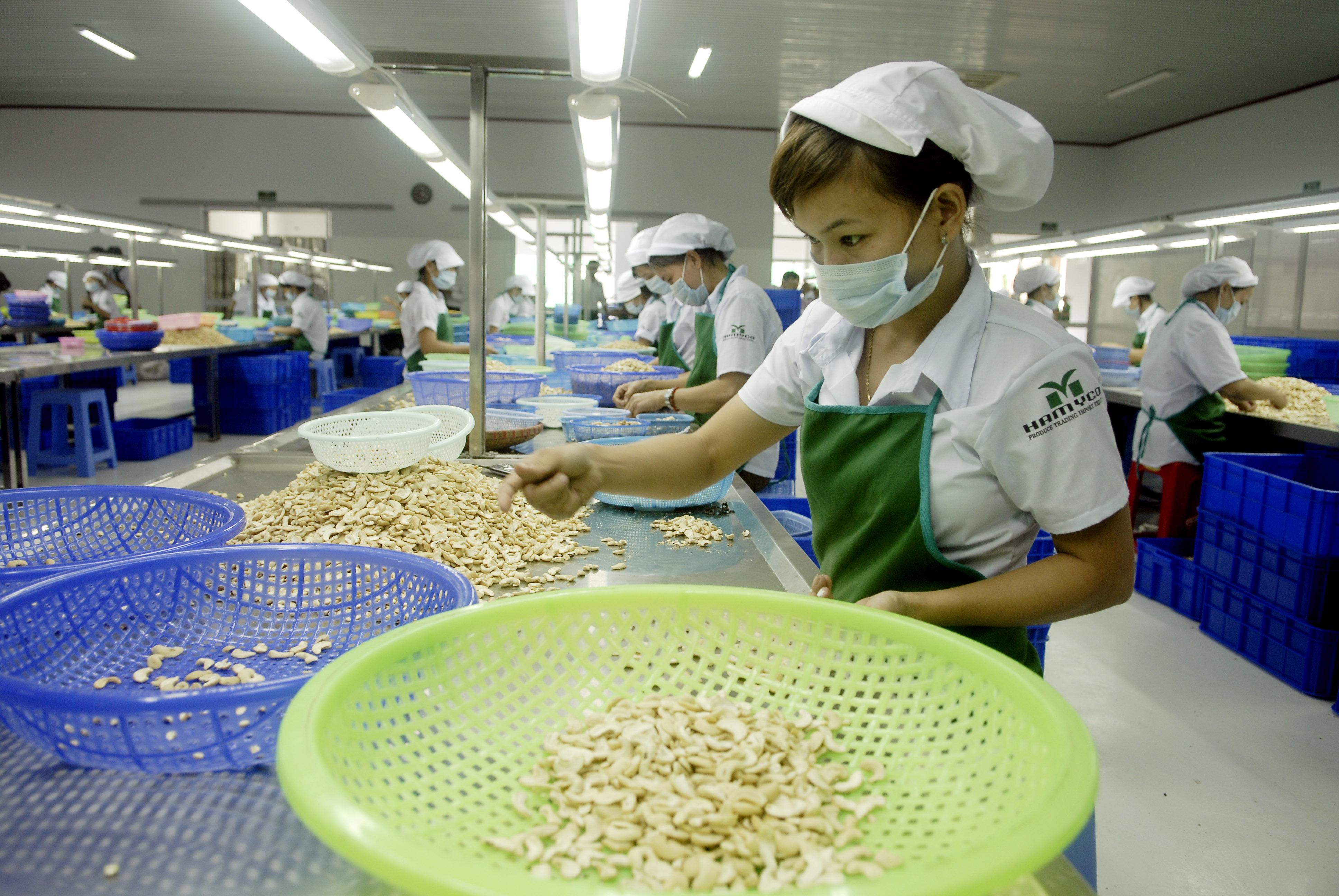 World Bank announces new cooperation framework with Vietnam, vietnam economy, business news, vn news, vietnamnet bridge, english news, Vietnam news, news Vietnam, vietnamnet news, vn news, Vietnam net news, Vietnam latest news, Vietnam breaking news