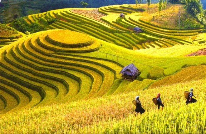 Vietnam named among 20 most beautiful countries, travel news, Vietnam guide, Vietnam airlines, Vietnam tour, tour Vietnam, Hanoi, ho chi minh city, Saigon, travelling to Vietnam, Vietnam travelling, Vietnam travel, vn news