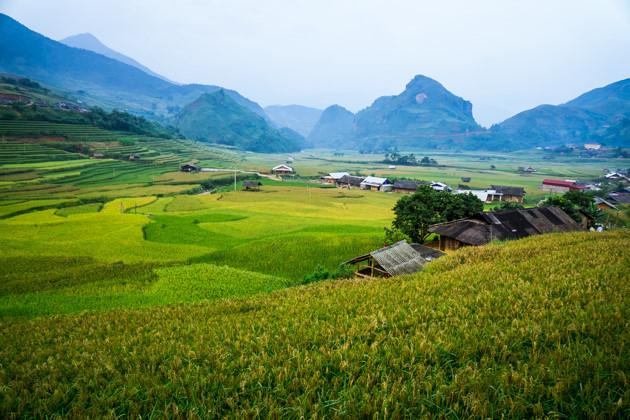 Picturesque Mu Cang Chai in ripe season