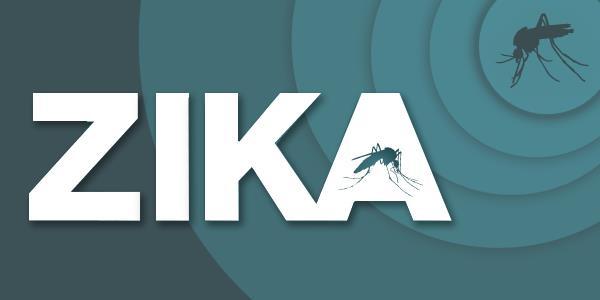 Vinh Long reports 1st Zika case, social news, vietnamnet bridge, english news, Vietnam news, news Vietnam, vietnamnet news, Vietnam net news, Vietnam latest news, vn news, Vietnam breaking news