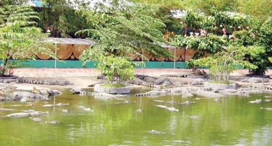 HCMC authority approves wild animal breeding program
