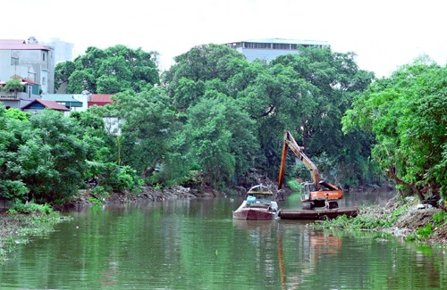 Aquatic plants suggested to purify polluted river water, environmental news, sci-tech news, vietnamnet bridge, english news, Vietnam news, news Vietnam, vietnamnet news, Vietnam net news, Vietnam latest news, Vietnam breaking news, vn news