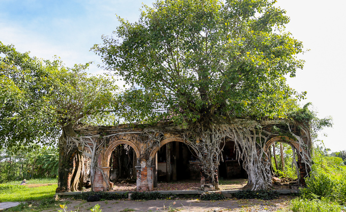 The ancient communal house inside Bodhi trees in Tien Giang, travel news, Vietnam guide, Vietnam airlines, Vietnam tour, tour Vietnam, Hanoi, ho chi minh city, Saigon, travelling to Vietnam, Vietnam travelling, Vietnam travel, vn news