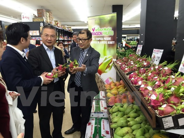 """Vietnamese Dragon Fruit Day"" goes vibrant in Australia, PM holds policy dialogue with leading private firms, Credit growth rate tops 11 percent during first nine months 2017, HCMC halts pilot electronic cargo supervision at Cat Lai seaport"