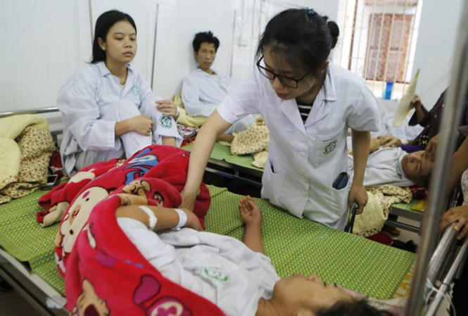Vietnam to have dengue fever vaccine from next year, social news, vietnamnet bridge, english news, Vietnam news, news Vietnam, vietnamnet news, Vietnam net news, Vietnam latest news, vn news, Vietnam breaking news