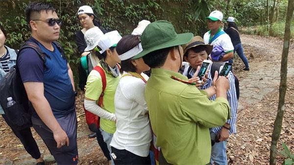 Bach Ma National Park, forest protection, arrest illegal loggers, Vietnam economy, Vietnamnet bridge, English news about Vietnam, Vietnam news, news about Vietnam, English news, Vietnamnet news, latest news on Vietnam, Vietnam