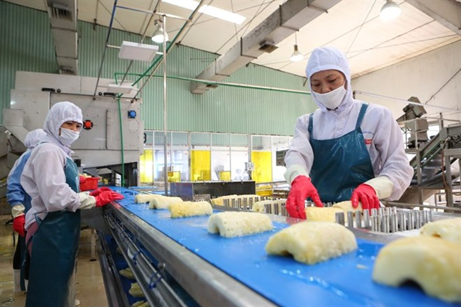 Minister: Big surge in Vietnam's exports possible, vietnam economy, business news, vn news, vietnamnet bridge, english news, Vietnam news, news Vietnam, vietnamnet news, vn news, Vietnam net news, Vietnam latest news, Vietnam breaking news