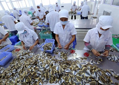Vietnam-Eurasian trade surges, vietnam economy, business news, vn news, vietnamnet bridge, english news, Vietnam news, news Vietnam, vietnamnet news, vn news, Vietnam net news, Vietnam latest news, Vietnam breaking news