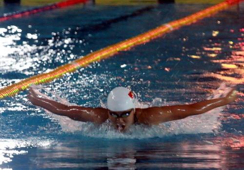 Anh Vien wins 16 golds at national swimming event, Sports news, football, Vietnam sports, vietnamnet bridge, english news, Vietnam news, news Vietnam, vietnamnet news, Vietnam net news, Vietnam latest news, vn news, Vietnam breaking news