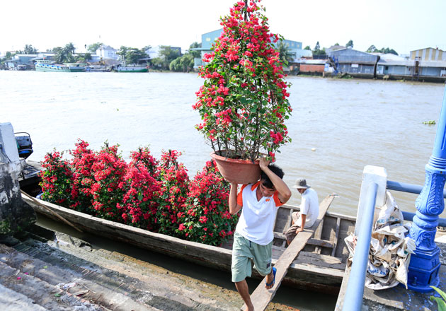 Lost in Sa Dec flower village, travel news, Vietnam guide, Vietnam airlines, Vietnam tour, tour Vietnam, Hanoi, ho chi minh city, Saigon, travelling to Vietnam, Vietnam travelling, Vietnam travel, vn news