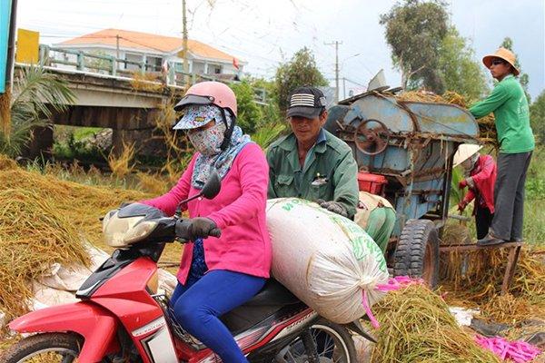 HCM City gets new serviced apartment, Vietnam Int'l Industrial Fair returns Hanoi, Rice exports surpass 2016 volume, Luang Prabang calls for HCMC investors, Singapore registers to invest over $41.38 billion in Vietnam