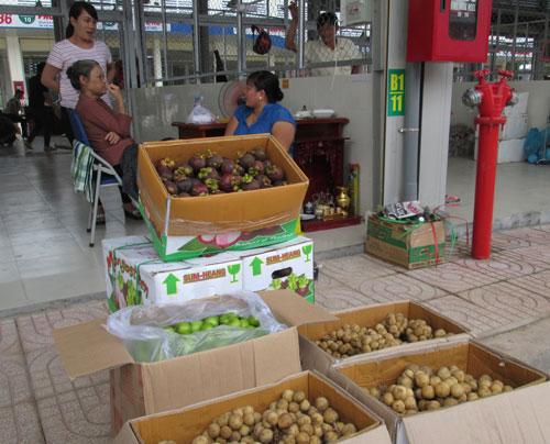 vietnam economy, business news, vn news, vietnamnet bridge, english news, Vietnam news, news Vietnam, vietnamnet news, vn news, Vietnam net news, Vietnam latest news, Vietnam breaking news, fruit & vegetable exports, GDC, MOIT