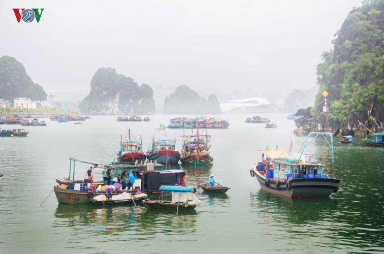 Tranquillity of Ha Long in autumn, travel news, Vietnam guide, Vietnam airlines, Vietnam tour, tour Vietnam, Hanoi, ho chi minh city, Saigon, travelling to Vietnam, Vietnam travelling, Vietnam travel, vn news