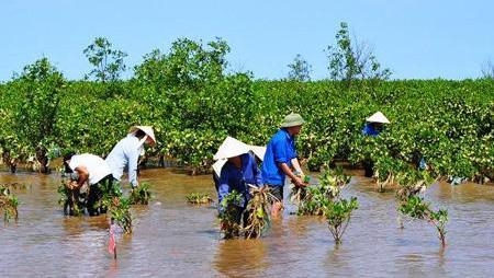 Target programme for climate change response and green growth approved, environmental news, sci-tech news, vietnamnet bridge, english news, Vietnam news, news Vietnam, vietnamnet news, Vietnam net news, Vietnam latest news, Vietnam breaking news, vn news