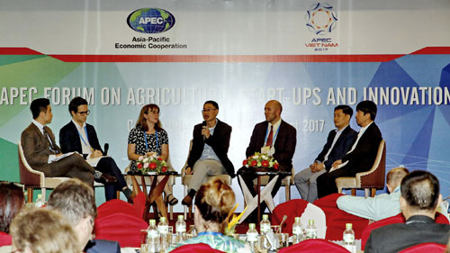 Start-ups: Motivation for APEC's Development