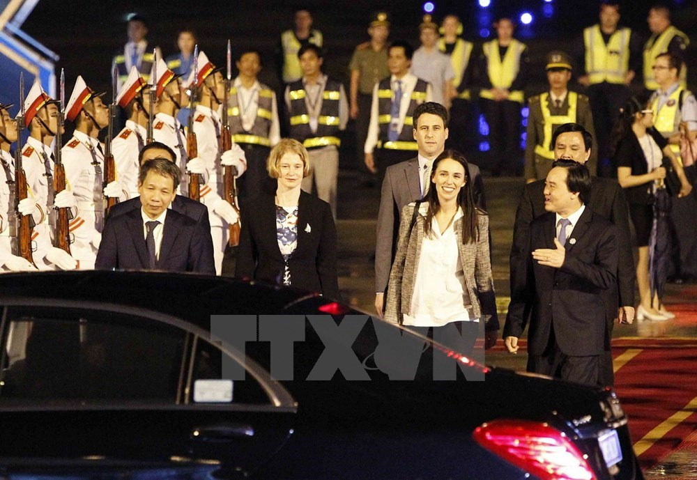 More leaders from APEC economies arrive in Da Nang, Government news, Vietnam breaking news, politic news, vietnamnet bridge, english news, Vietnam news, news Vietnam, vietnamnet news, Vietnam net news, Vietnam latest news, vn news