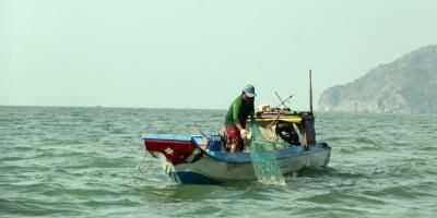 VN seafood mulls action on EU warning, vietnam economy, business news, vn news, vietnamnet bridge, english news, Vietnam news, news Vietnam, vietnamnet news, vn news, Vietnam net news, Vietnam latest news, Vietnam breaking news