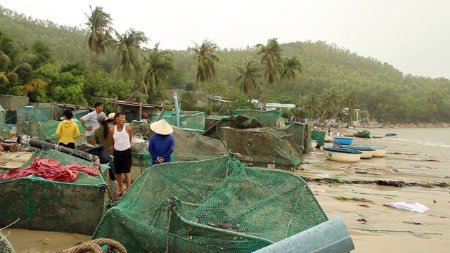 Aquaculture farmers need new loans after Damrey, social news, vietnamnet bridge, english news, Vietnam news, news Vietnam, vietnamnet news, Vietnam net news, Vietnam latest news, vn news, Vietnam breaking news
