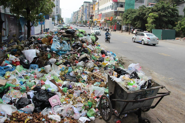 Ha Long City covered in rubbish, Vietnam environment, climate change in Vietnam, Vietnam weather, Vietnam climate, pollution in Vietnam, environmental news, sci-tech news, vietnamnet bridge, english news, Vietnam news, news Vietnam, vietnamnet news, Vietn