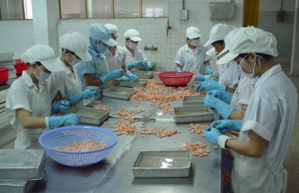 investment in the food processing industry The government has permitted 100 per cent foreign direct investment (fdi) in the food processing industry, several overseas companies are ready to invest in india significantly, american companies are showing.