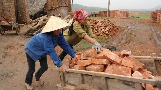 Only 15% of workers in informal sector provided with skills training, social news, vietnamnet bridge, english news, Vietnam news, news Vietnam, vietnamnet news, Vietnam net news, Vietnam latest news, vn news, Vietnam breaking news