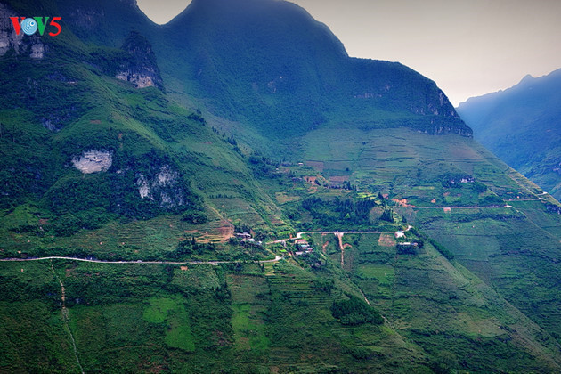 Tourists flock to Ha Giang during buckwheat season, travel news, Vietnam guide, Vietnam airlines, Vietnam tour, tour Vietnam, Hanoi, ho chi minh city, Saigon, travelling to Vietnam, Vietnam travelling, Vietnam travel, vn news