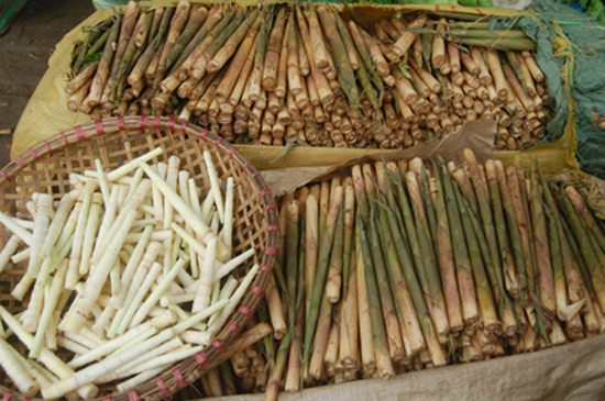 Mang dang (bamboo sprouts), travel news, Vietnam guide, Vietnam airlines, Vietnam tour, tour Vietnam, Hanoi, ho chi minh city, Saigon, travelling to Vietnam, Vietnam travelling, Vietnam travel, vn news