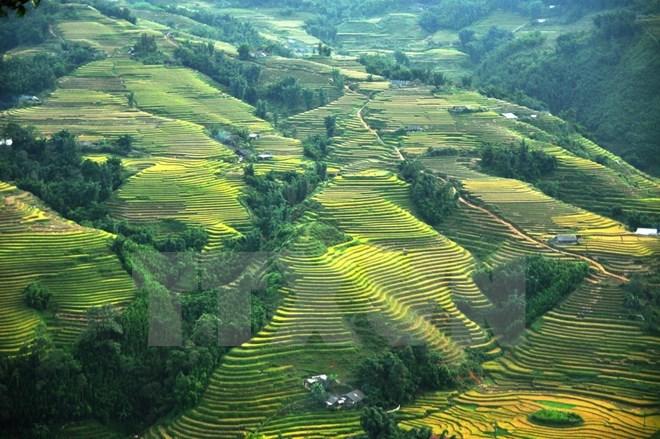 Sa Pa winter festival to take place, travel news, Vietnam guide, Vietnam airlines, Vietnam tour, tour Vietnam, Hanoi, ho chi minh city, Saigon, travelling to Vietnam, Vietnam travelling, Vietnam travel, vn news