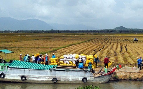 Mekong provinces link up on water management, environmental news, sci-tech news, vietnamnet bridge, english news, Vietnam news, news Vietnam, vietnamnet news, Vietnam net news, Vietnam latest news, Vietnam breaking news, vn news