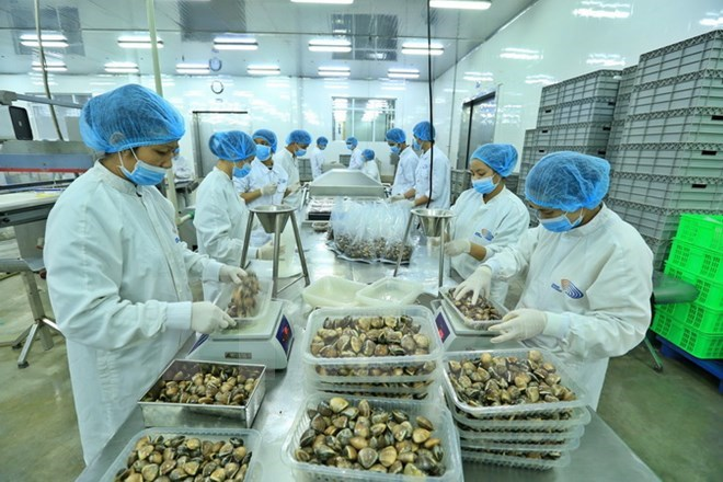 Vietnam's exports likely to hit all-high $212 billion this year, vietnam economy, business news, vn news, vietnamnet bridge, english news, Vietnam news, news Vietnam, vietnamnet news, vn news, Vietnam net news, Vietnam latest news, Vietnam breaking news