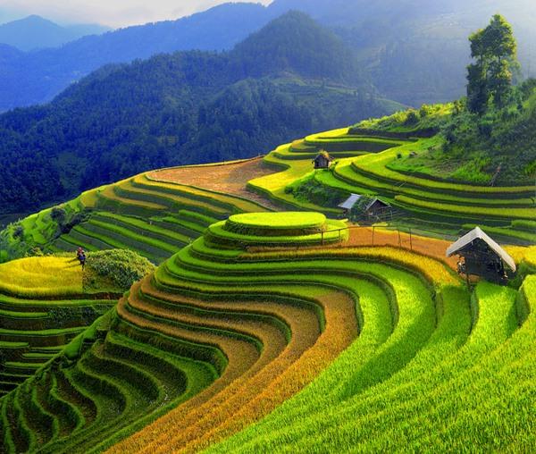 Mu Cang Chai named as worthy visit by US travel site, travel news, Vietnam guide, Vietnam airlines, Vietnam tour, tour Vietnam, Hanoi, ho chi minh city, Saigon, travelling to Vietnam, Vietnam travelling, Vietnam travel, vn news